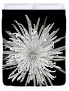 Monochrome Spider Chrysanthemum  Duvet Cover