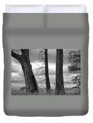 Monochrome Trees Duvet Cover