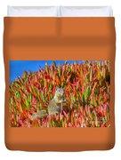Monterey Squirrel Duvet Cover