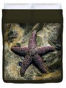 Moody Starfish IIi Duvet Cover