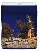 Moon And Bristlecone Pines Duvet Cover
