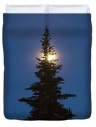Moon Behind Spruce Duvet Cover