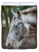 Moon Eyed Horse Duvet Cover