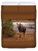 Moose Calf Duvet Cover