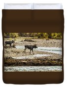 Moose Crossing River No. 1 - Grand Tetons Duvet Cover