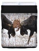 Moose Fighting, Gaspesie National Park Duvet Cover by Nicolas Bradette