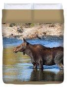 Moose On The  Gros Ventre River Duvet Cover