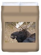 Moose Pictures 101 Duvet Cover
