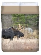 Moose Pictures 75 Duvet Cover