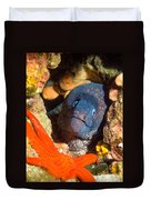 Moray And Starfish Duvet Cover