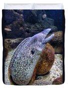 Moray Eel Duvet Cover