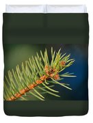 More Spruce Buds Duvet Cover