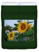 Morning Field Of Sunflowers Duvet Cover