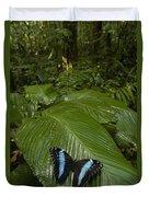 Morpho Butterfly In Rainforest Ecuador Duvet Cover