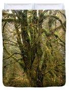 Moss-covered Bigleaf Maple  Duvet Cover