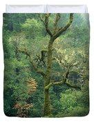 Moss Covered Tree Central California Duvet Cover