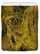 Moss-covered Tree Trunks  Duvet Cover