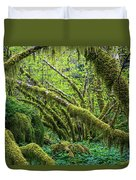 Moss Grows On Vine Maple Trees  Acer Duvet Cover