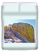 Moss On Giant Rocks Along Echo Canyon Trail In Chiricahua National Monument-arizona  Duvet Cover