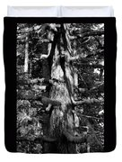 Moss On The Evergreens II In Black And White Duvet Cover
