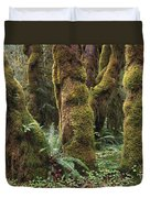 Mossy Big Leaf Maples In Hoh Rainforest Duvet Cover