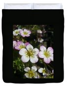 Mossy Saxifrage Flower Carpet Duvet Cover