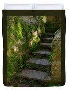 Mossy Steps Duvet Cover