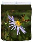 Moth Feeding On Aster Dragon Duvet Cover