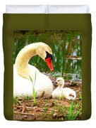 Mother Swan And Baby Duvet Cover