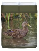 Mottled Duck Drake Duvet Cover