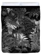 Mountain Ferns 1 Duvet Cover by Roger Snyder