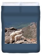 Mountain Goat Nanny And Kid Enloying The View On Mount Evans Duvet Cover