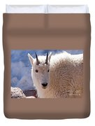 Mountain Goat Portrait On Mount Evans Duvet Cover