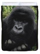 Mountain Gorilla Juvenile Portrait Duvet Cover