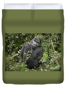 Mountain Gorilla Praying Duvet Cover