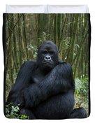 Mountain Gorilla Silverback Duvet Cover