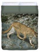 Mountain Lion Crossing Rocky Terrain Duvet Cover
