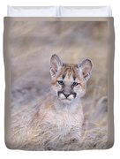 Mountain Lion Cub In Dry Grass Duvet Cover