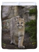Mountain Lion Cub Walking Duvet Cover