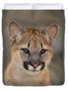 Mountain Lion Felis Concolor Captive Wildlife Rescue Duvet Cover