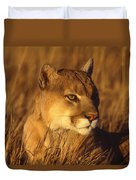Mountain Lion Montana Duvet Cover