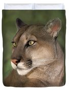 Mountain Lion Portrait Wildlife Rescue Duvet Cover