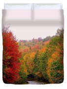 Mountain Road In Fall Duvet Cover