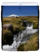 Mountain Stream And Guallatiri Volcano Duvet Cover