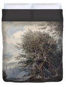 Mountainous Landscape With Beech Trees Duvet Cover