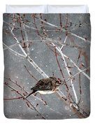 Mourning Dove Asleep In Snowfall Duvet Cover