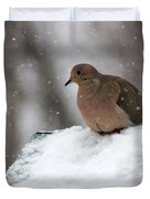 Mourning Dove In Snow Duvet Cover
