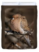 Mourning Dove Pictures 32 Duvet Cover