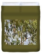 Mourning Doves Landing In Eucalyptus  Duvet Cover