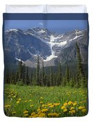 1m3613-mt. Patterson And The Snowbird Glacier Duvet Cover